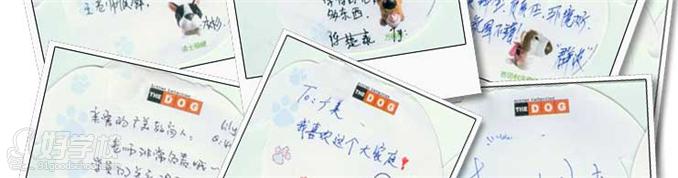 广州平面广告设计师illustrator培训班