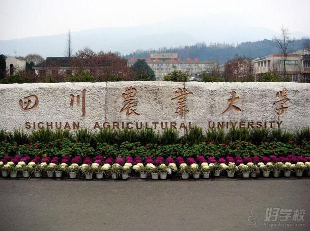 四川农业大学远程教育《经济信息管理》高升专广州班