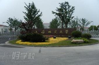 上海师范大学继续教育学院小学教育大小自考年级学五专业作文新闻图片