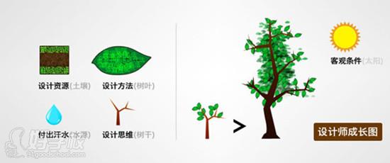设计思维的形成很像树的成长